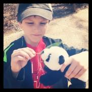 Billy the panda needs his bamboo.