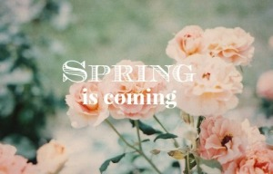 spring is coming